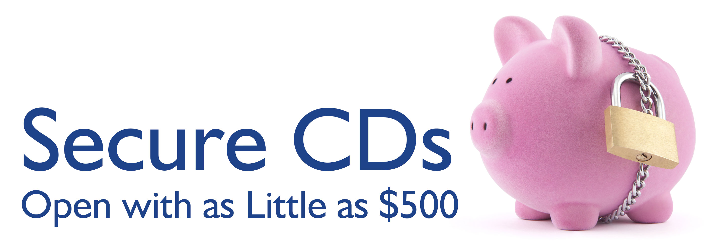 Secure CDs with a competitive dividend.